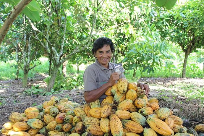 Dinorath Figueiredo, produtora de cacau cuja foto e história estão impressas nas embalagens do chocolate Na'kau - empresa capta recursos na segunda rodada da plataforma de empréstimo coletivo SITAWI